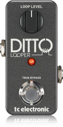 Pedals Module Ditto Looper from TC Electronic