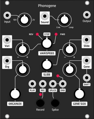 Eurorack Module Phonogene (Grayscale black panel) from Grayscale