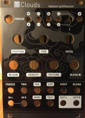 Eurorack Module clouds magpie from Other/unknown