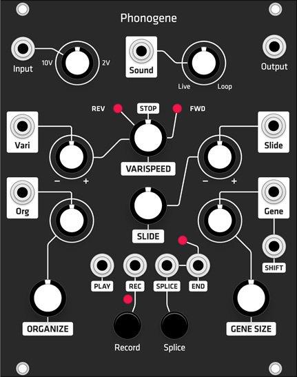 Grayscale Phonogene (Grayscale black panel) - Eurorack Module on