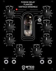 Eurorack Module Fusion Delay/Flanger/Vintage Ensemble from Erica Synths